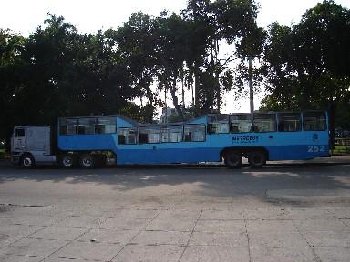 20070725152239-metrobus.jpg