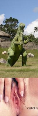 20090209153516-dragon.jpg