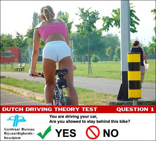 20100726234700-dutch-driving-test.jpg