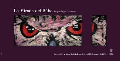 20110104225510-la-mirada-del-buho2011.jpg